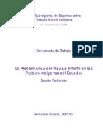 Flacso Ec Estudio Preliminar Flacso Tii