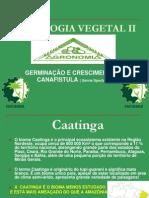 Fisiologia Vegetal II Canafistula