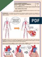 Guía #6 Sistema Circulatorio