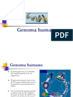 Genoma Humano.ppt
