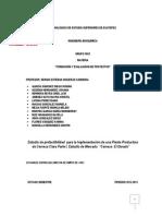 Estudio de Mercado Corregido y Aumentado (1)
