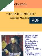 TRABAJO DE MENDEL