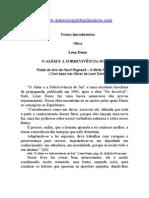 Textos Introdutórios - Obras - Léon Denis - O Além e a Sobrevivência  Do Ser