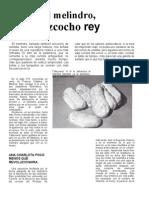 EL MELINDRO.doc