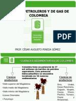 2. Campos Petroleros - Colombia (a) [Autoguardado]