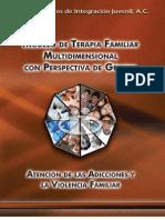 Modelo de Terapia Familiar Multidimensional Con Perspectiva de Genero