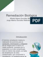 RemediacionBiologica