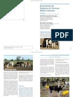 11-Engorde-de-Terneros-Macho-Holando.pdf