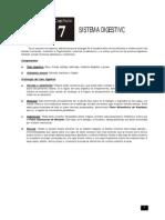 SIstema Digestivo 7