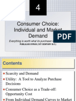 Consumer Choice 4
