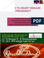 Heart Diz in Pregnancy2013O&Gperlis
