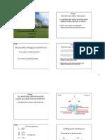 ambiguity.pdf
