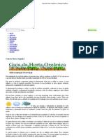 Guia da Horta Orgânica « Planeta Orgânico