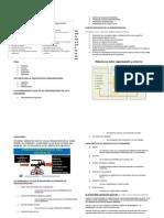 Resumen Org