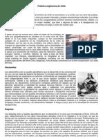 Guia de Los Pueblos Originarios de Chile
