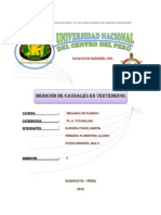 CARATULA DE FLUIDOS I.docx