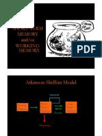 4 Workingmemory NC