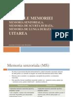 Ladar (Boroianu) Ioana_Formele Memoriei_prezentare