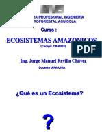 Clase 1_1_Eco_Sist_Ama-UNIA_jmrch_2009_I