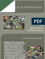 Perdida de La Biodiversidad 01