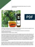 Vinos_de_Papaya.docx
