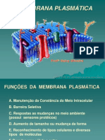 2 AULA  membrana plasmática