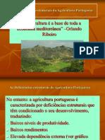As Deficiencias Estruturais Da Agricultura Portuguesa