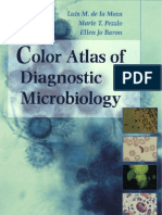 Color Atlas of Diagnostic Microbiology