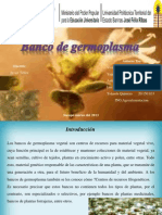 Banco de Germoplasma