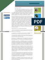 ¿Que es la Mercadotecnia Social?.pdf