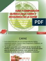 ESTRUCTURA Y COMPOSICIÓN QUÍMICA DE LA CARNE Y