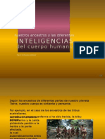 Ancestros & Inteligencias