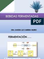 04 BEBIDAS FERMENTADAS