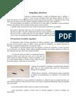 34565296-Empalmes-electricos.pdf
