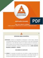 AULA 2 - ADAPTAÇÕES CELULARES - 2011-1