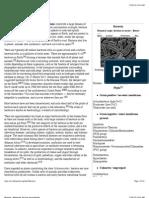 Bacteria - Wikipedia, The Free Encyclopedia