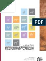 FAO 2010 Situacion Actual RGA Ojoo (1) (1)