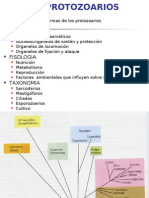 Generalidades Protozoarios