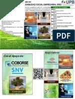 Diplomado RSE - Segunda versión.pdf
