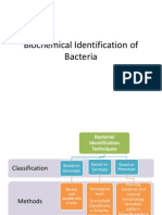 Biochemical Identification of Bacteria