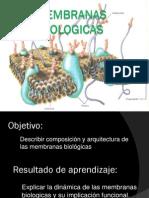 MEMBRANAS BIOLOGICAS