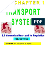 8.1 - Structure of Heart
