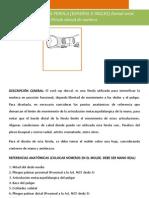 Formato de Manual de Ortesis 2013