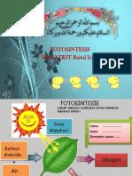Fotosintesis PPT Alya.pptx
