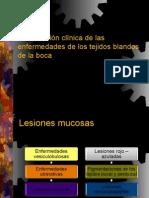8 PATOLOGIA BUCAL Caract Clinicas Tejidos Blandos de La Boca_2012 [Unlocked by Www.freemypdf.com]