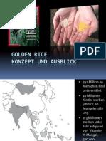 Golden Rice – konzept und ausblick
