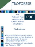 Expo Electroforesis