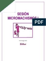 SESION_MICROMACHISMOS