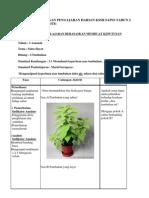 Contoh Rancangan Pengajaran Harian Kssr Sains Tahun 2