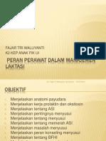Peran Perawat Dalam Manajemen Laktasi 2012